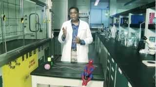 Science Xplained: Spidey Science